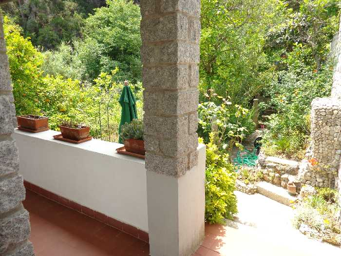 For sale Detached house Marciana S. Andrea/La Zanca #4213 n.6