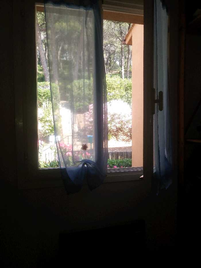 Vendita Appartamento Rio Capo d'Arco #4225 n.6