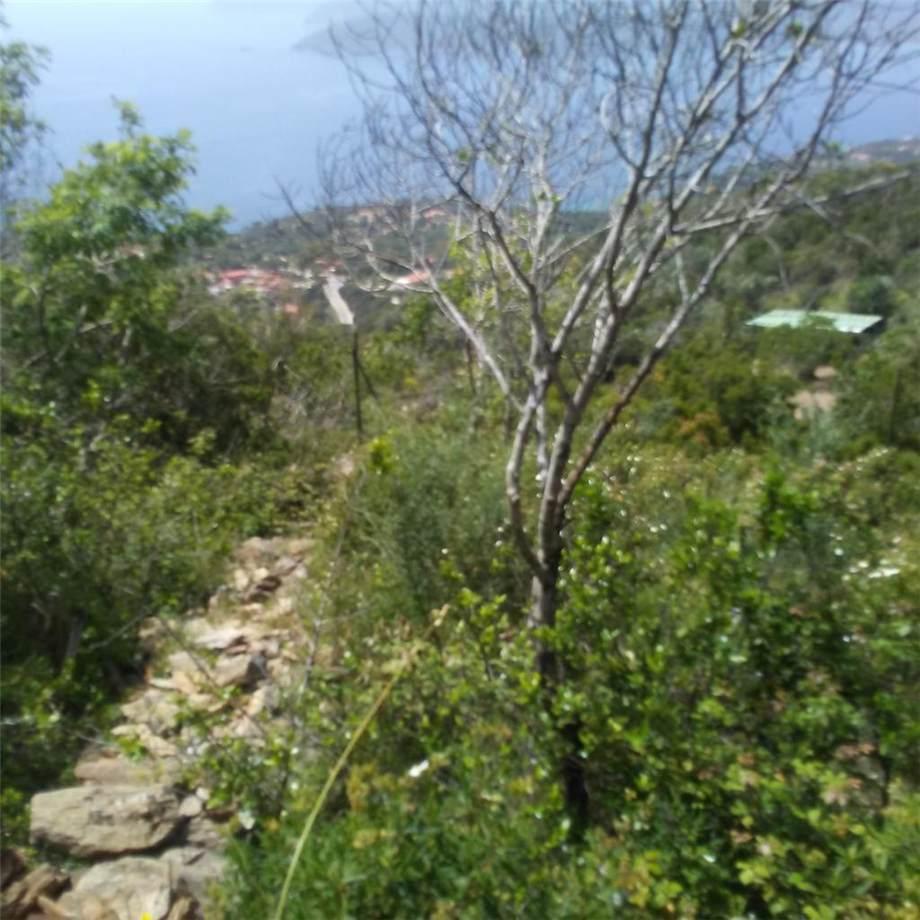 For sale Land Capoliveri Capoliveri altre zone #4637 n.9