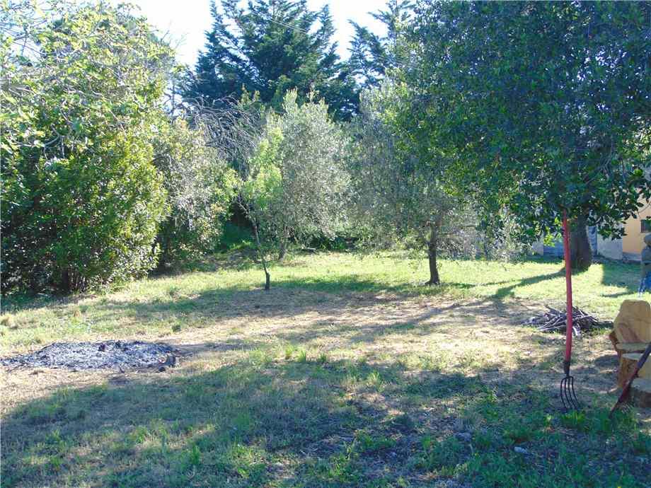 Vendita Terreno Campo nell'Elba Bonalaccia/Filetto #4789 n.6