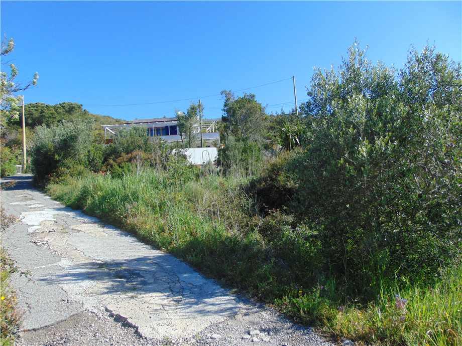 Vendita Terreno Campo nell'Elba Bonalaccia/Filetto #4789 n.7