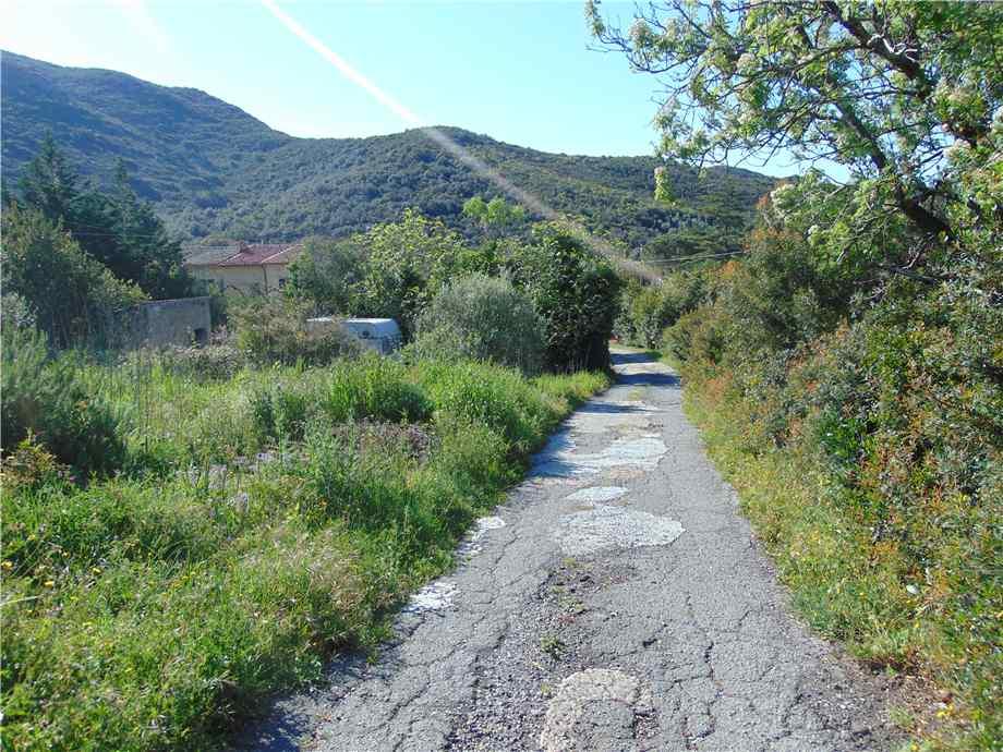 Vendita Terreno Campo nell'Elba Bonalaccia/Filetto #4789 n.8