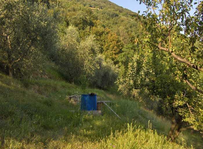 For sale Rural/farmhouse Predore  #PRE18 n.8