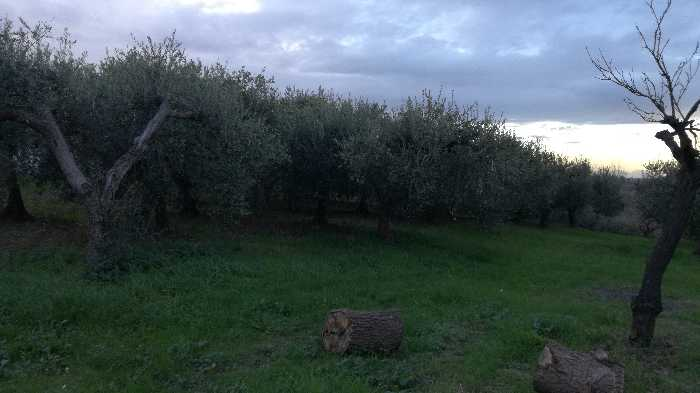 For sale Land Lanciano  #CT 24 n.6