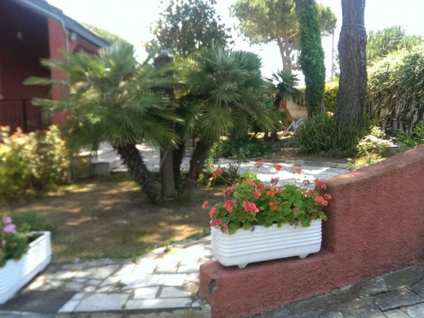 For sale Detached house Nettuno  #45V n.6