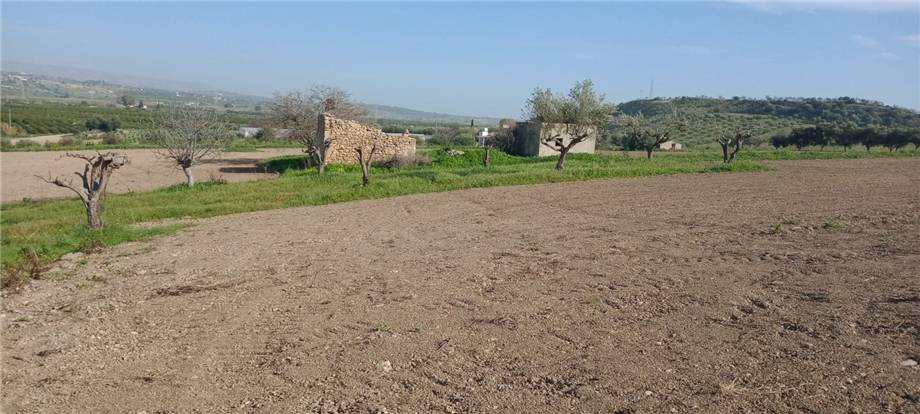 For sale Land Noto  #110T n.13