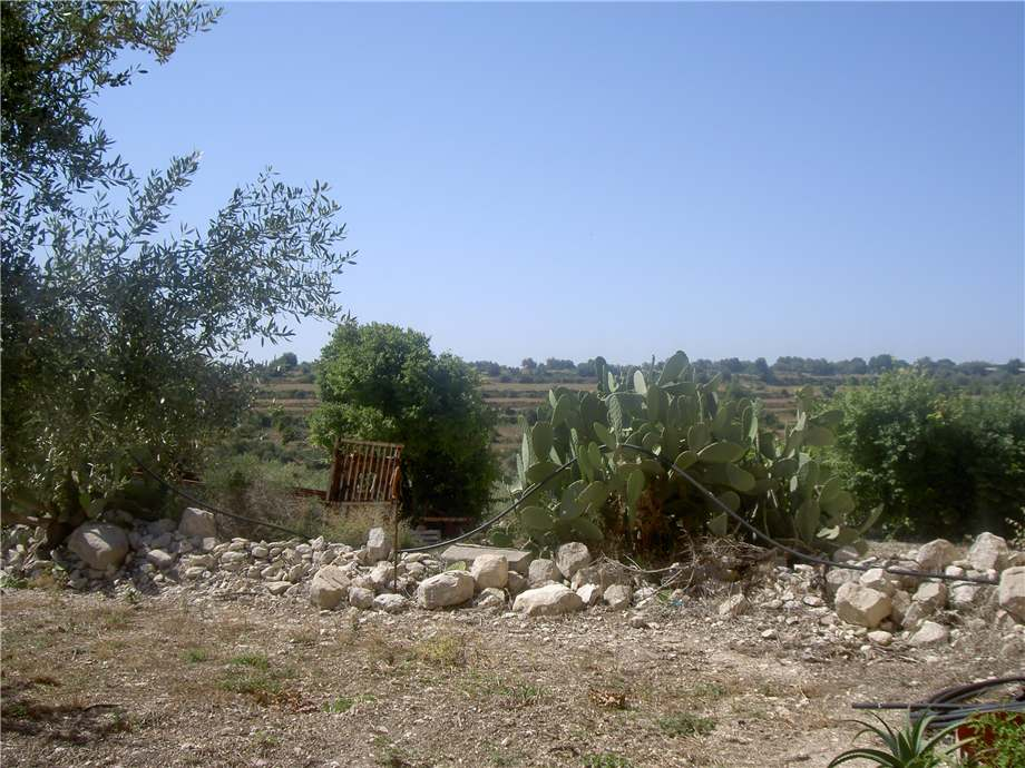 For sale Rural/farmhouse Modica  #1TM n.16