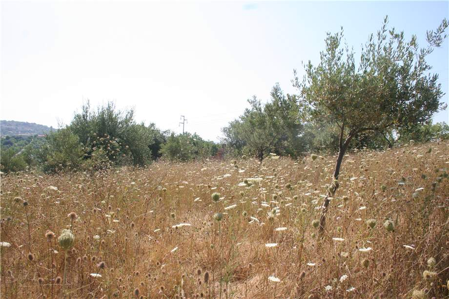 For sale Land Noto  #12T n.6