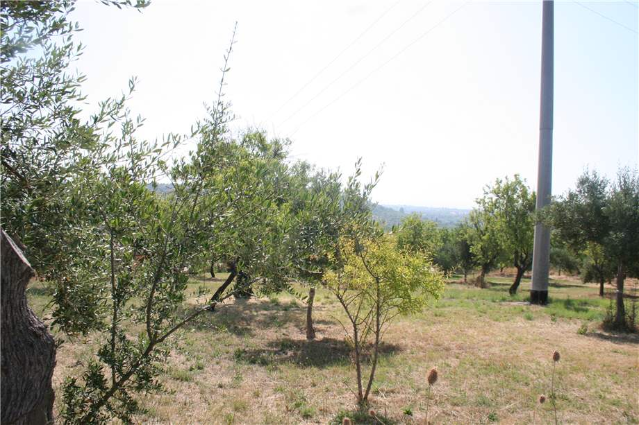 For sale Land Noto  #12T n.7