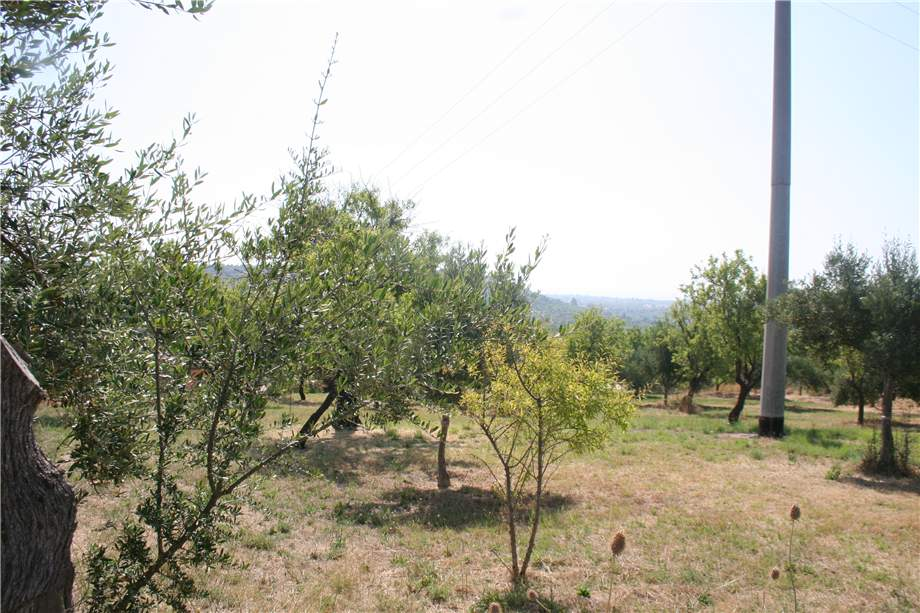 For sale Land Noto  #12T n.8