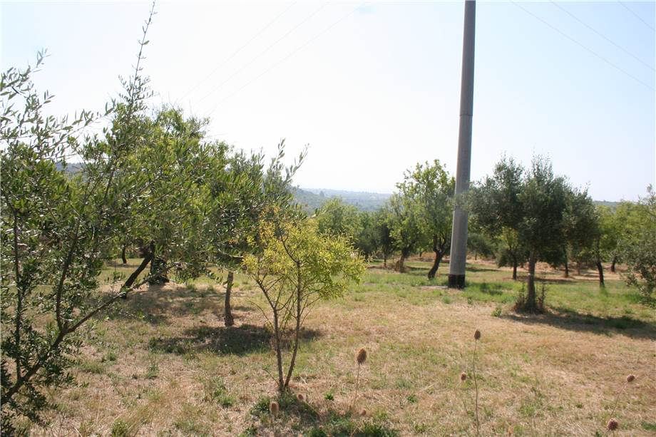 For sale Land Noto  #12T n.9