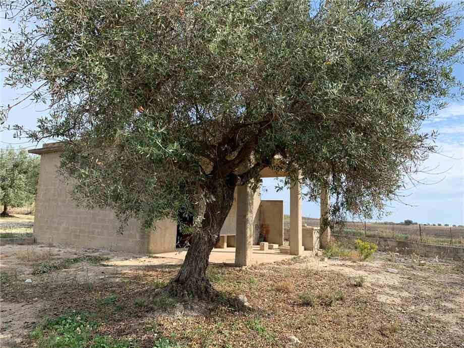 For sale Land Noto  #16T n.11