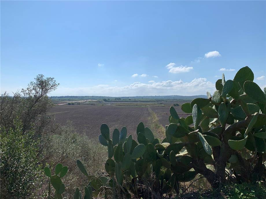 For sale Land Noto  #18T n.7