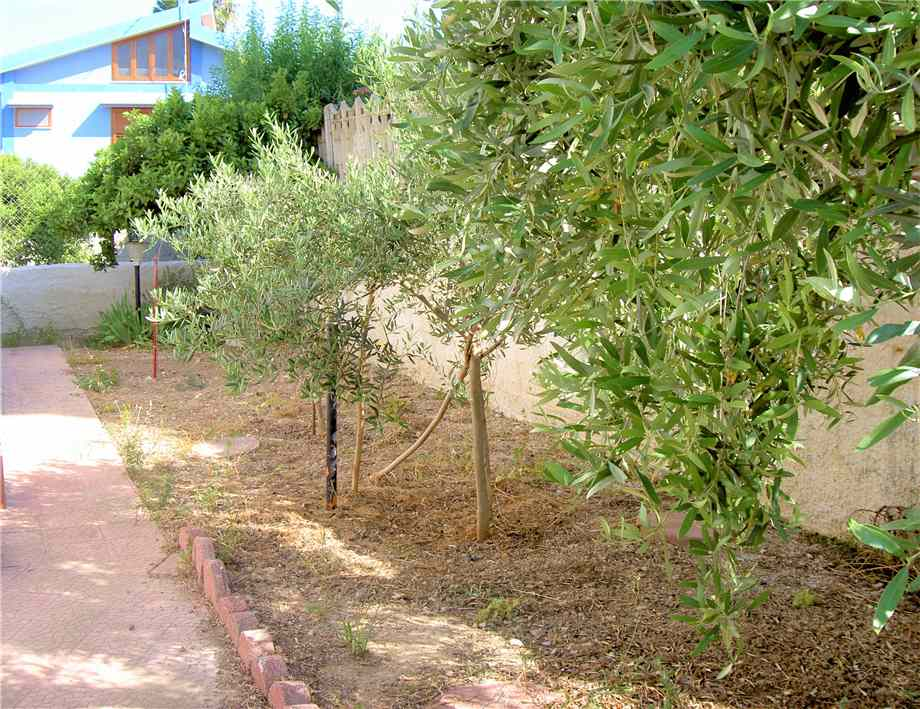 For sale Detached house Noto LIDO DI NOTO #5VM n.7