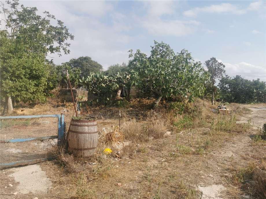 For sale Rural/farmhouse Noto TESTA DELL'ACQUA #CTCT n.16