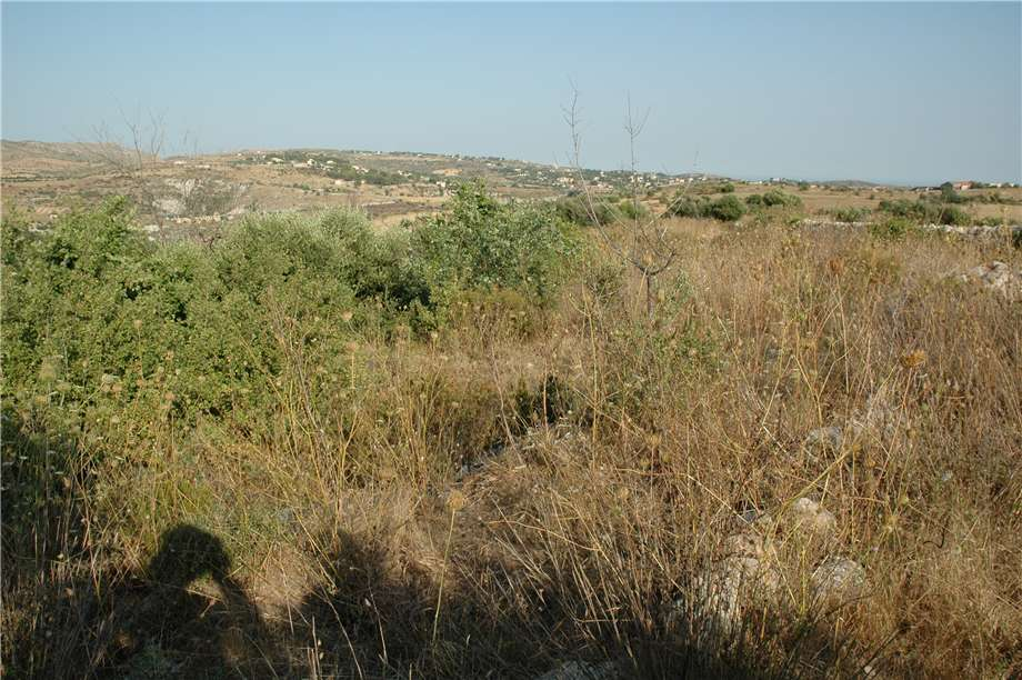 For sale Land Noto  #11TT n.8