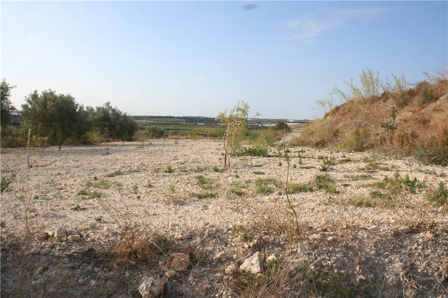 For sale Land Noto  #3tn n.16