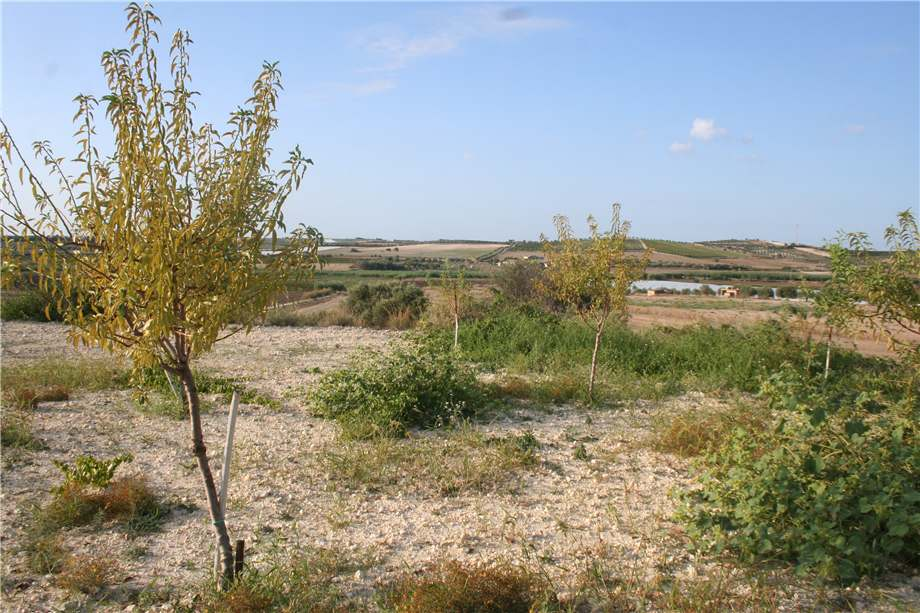 For sale Land Noto  #3tn n.19