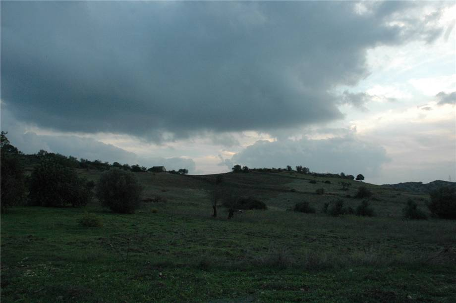 For sale Land Noto  #294T n.6