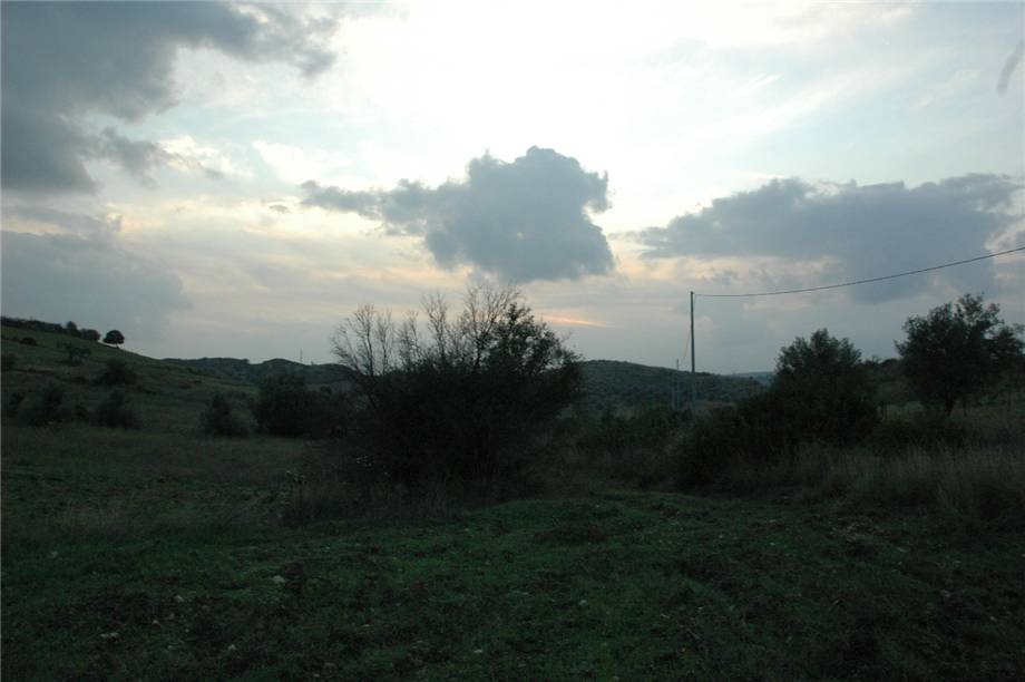For sale Land Noto  #294T n.8