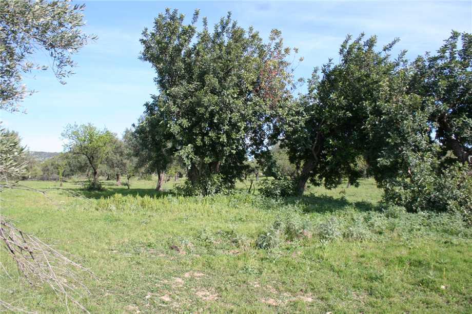 For sale Rural/farmhouse Noto  #46T n.19