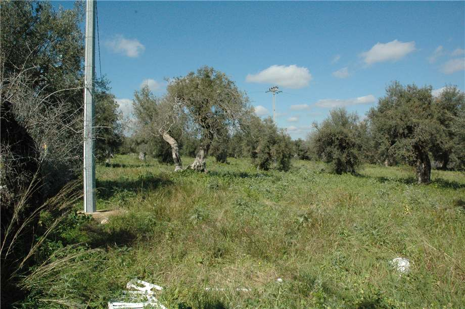 For sale Land Canicattini Bagni C/DA BOSCO DI SOPRA #2T n.17