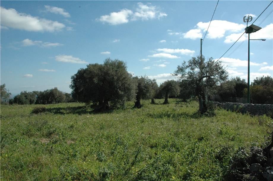 For sale Land Canicattini Bagni C/DA BOSCO DI SOPRA #2T n.19