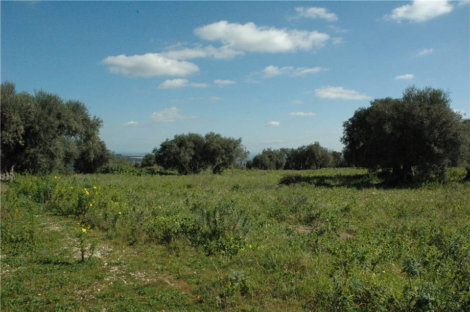 For sale Land Canicattini Bagni C/DA BOSCO DI SOPRA #2T n.20