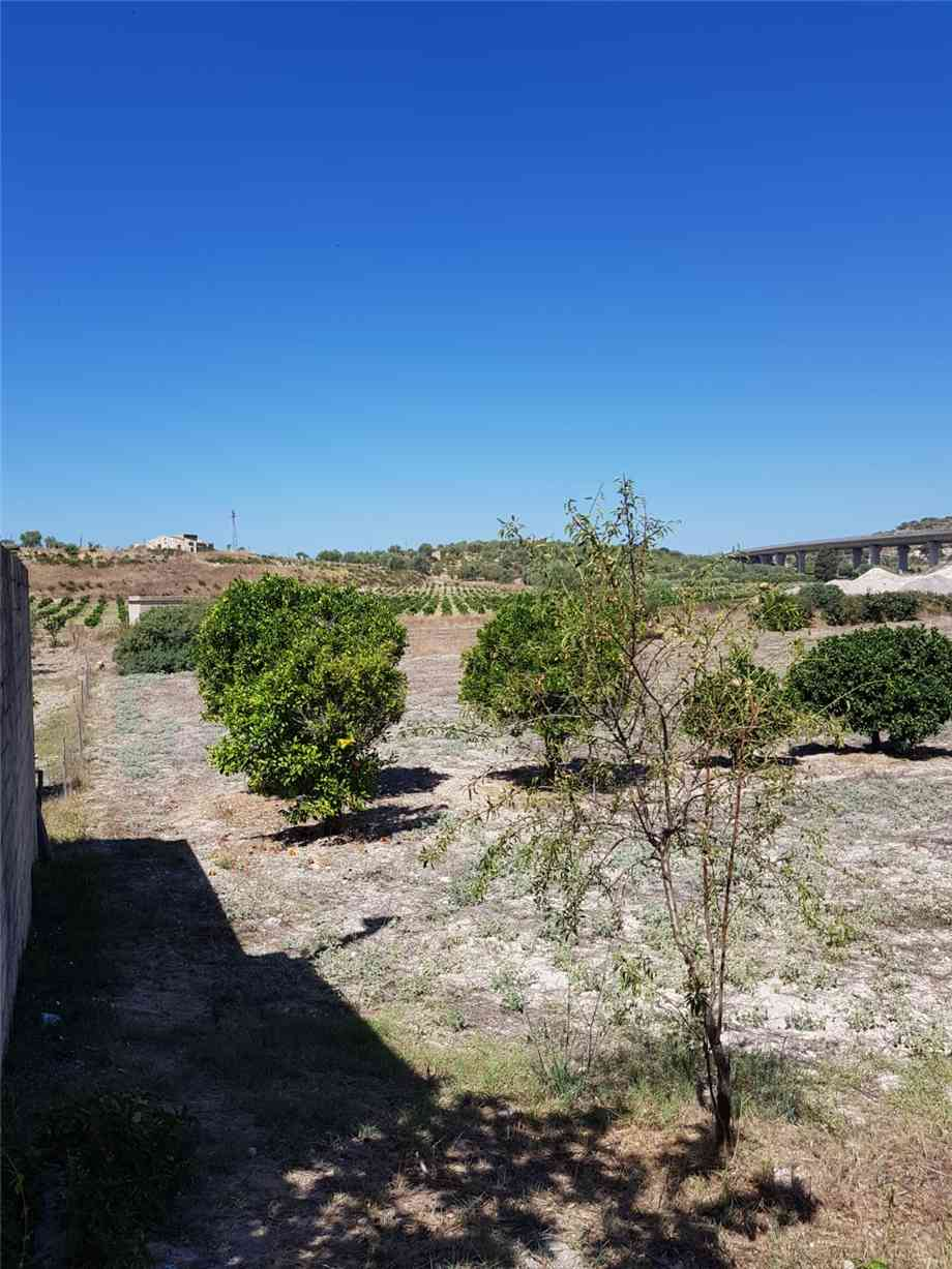 For sale Land Noto  #67T n.8