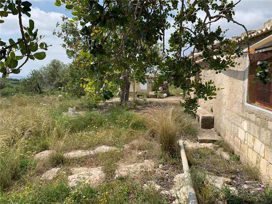 For sale Land Noto  #35T n.17