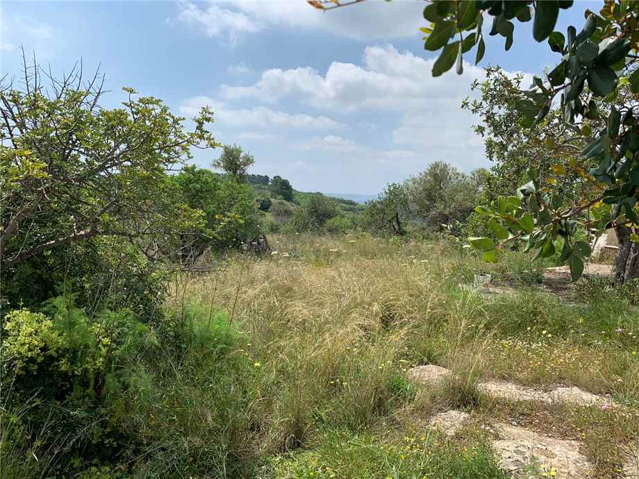 For sale Land Noto  #35T n.18