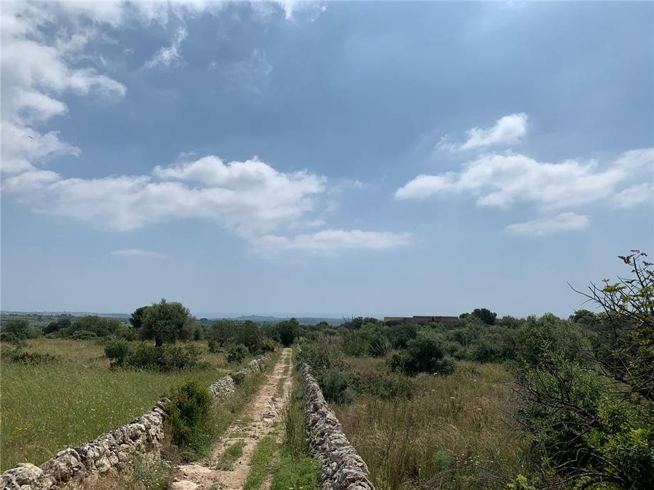 For sale Land Noto  #35T n.19