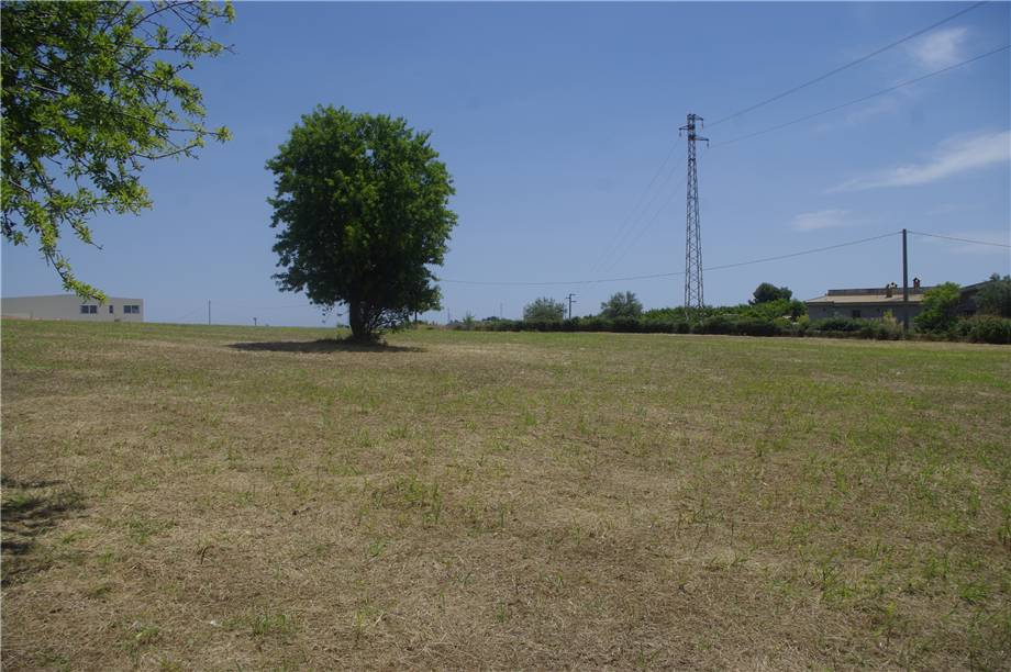 For sale Land Noto  #51T n.13